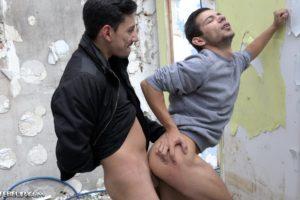 Sodomie profonde et violente