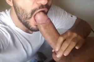 Turc sexy suce un gros chibre